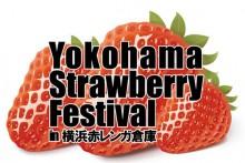 strawberry160206-1