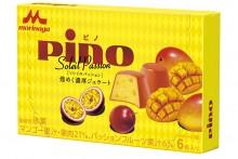pino_soleil